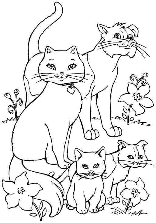 Imagini De Colorat Pentru Copii Animale De Colorat Pisici De